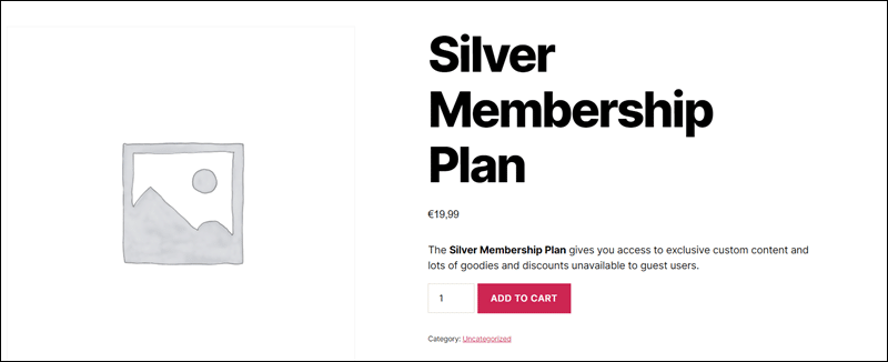 Preview of membership product on WordPress website.