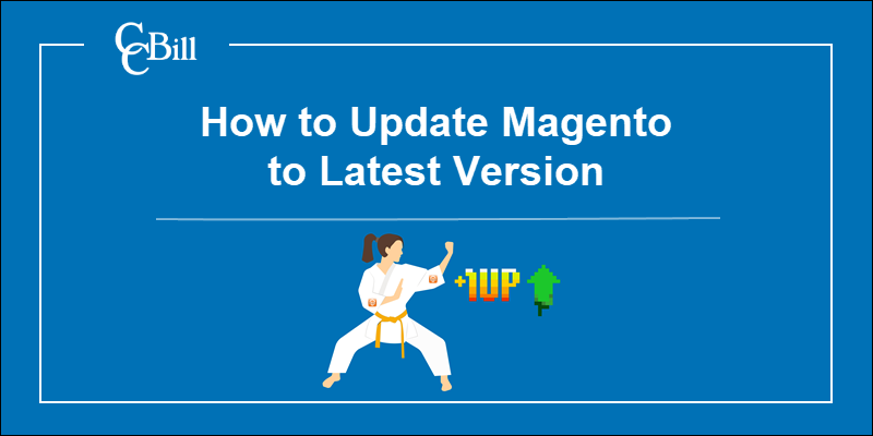 Upgrade Magento store to the latest version.