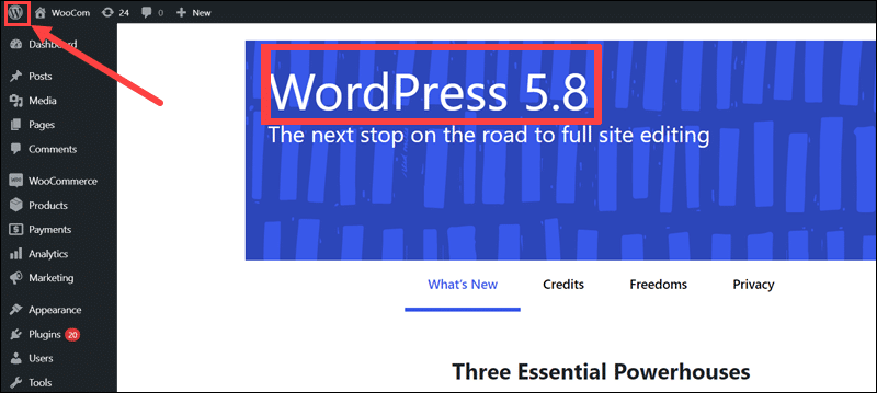 The WordPress version in the About WordPress page.
