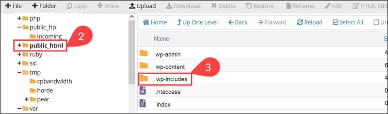 The wp-includes directory in WordPress.