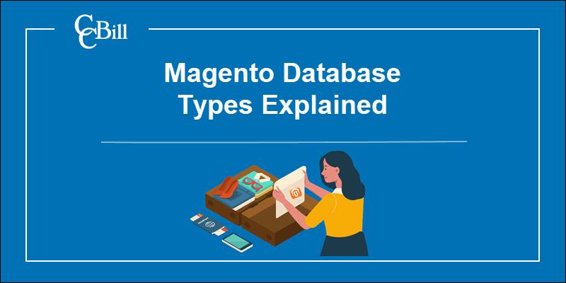 Merchant storing data into a database/suitecase.
