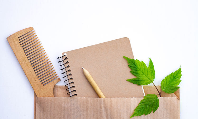Ecommerce Business Ideas Eco Friendly Products
