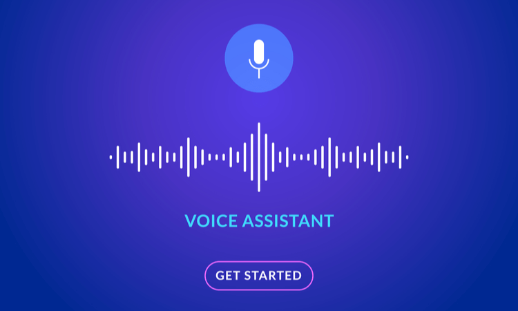 Future of Ecommerce Voice Assistants