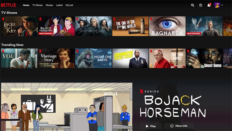 Netflix SVOD Business Model