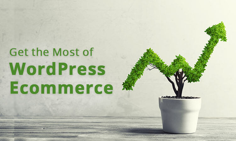 Get the Most of WordPress Ecommerce