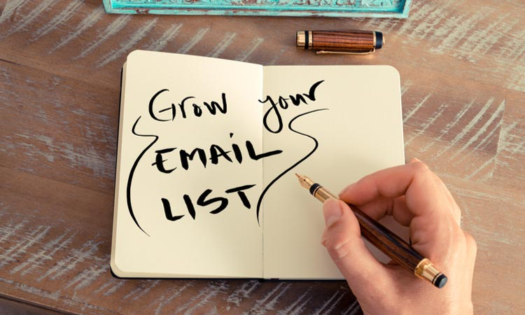 Ecommerce Grow Email List