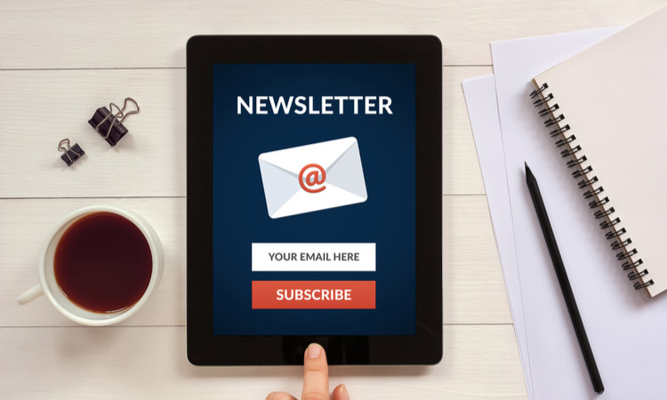 Ecommerce Newsletter Email
