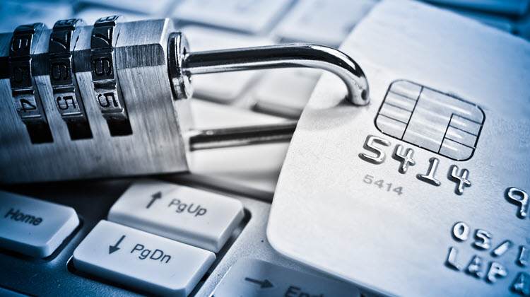 Fraud protection for high risk merchant accounts.