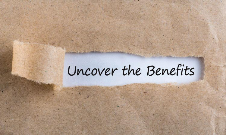 Payment Gateway Without Chargeback Options Benefits
