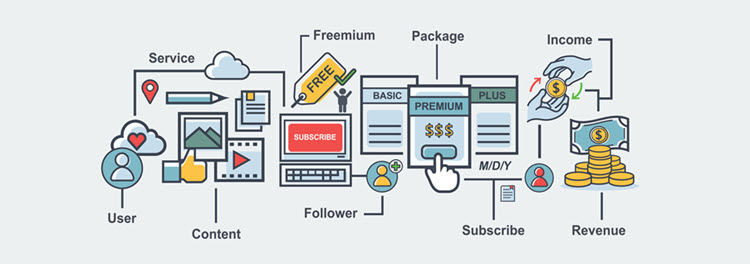 Features of the subscription business model.